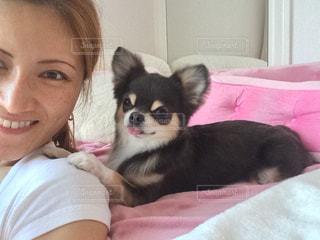 ソファで愛犬とくつろぐ癒しの時間の写真・画像素材[877355]