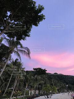 ペナン島での夕暮れの写真・画像素材[878896]