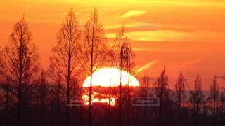 日の出の写真・画像素材[2248560]