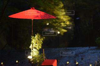 赤い傘の写真・画像素材[884821]
