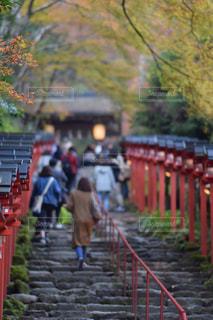 貴船神社の写真・画像素材[885166]
