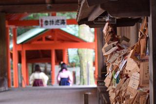 近江神宮の写真・画像素材[889241]