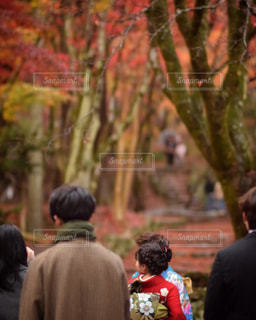 木の隣に立っている人のグループの写真・画像素材[896175]