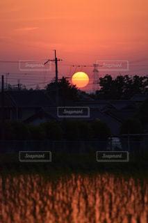 田畑から望む夕陽の写真・画像素材[898499]