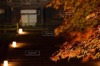 夜の街の景色の写真・画像素材[900732]