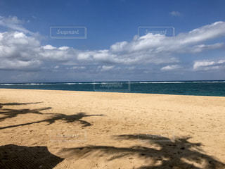 ビーチとヤシの木の影の写真・画像素材[1707209]