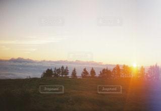 朝陽の写真・画像素材[883062]