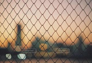 フェンス越しの写真・画像素材[905308]