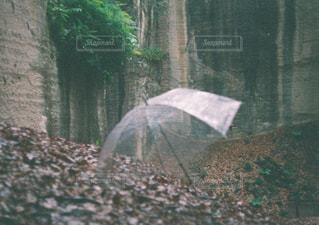 雨 - No.1088915