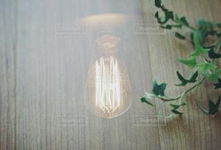 グリーンと電球の写真・画像素材[1533356]