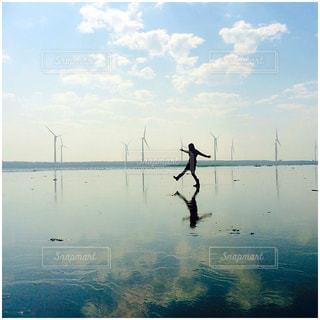 水の上を飛ぶ鳥の群れの写真・画像素材[881796]