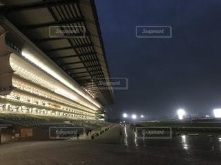 雨の東京競馬場、夜。の写真・画像素材[881029]