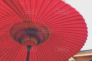 赤い傘の写真・画像素材[883242]