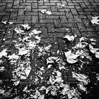 秋のミラノ、足下の写真・画像素材[882730]