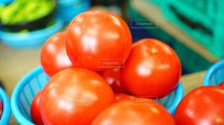 八百屋さんで売られている瑞々しいトマトの写真・画像素材[881739]