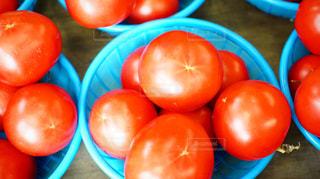 八百屋さんで売られている瑞々しいトマトの写真・画像素材[881740]