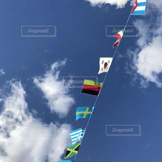 宙を舞う凧の写真・画像素材[881836]