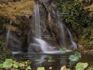 大きな滝の写真・画像素材[1530804]