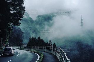 霧の国へようこその写真・画像素材[882420]