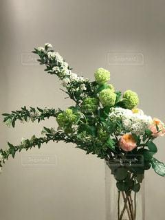 生け花の写真・画像素材[884450]