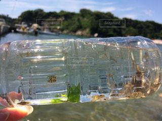 ペットボトルと海の写真・画像素材[884459]