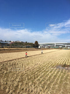 田んぼを走る子供たちの写真・画像素材[883416]