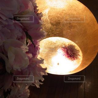 近くの花のアップの写真・画像素材[887084]