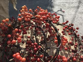 収穫の写真・画像素材[892634]
