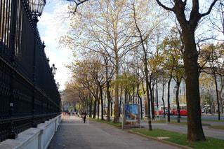 ウィーン の街並みの写真・画像素材[883824]