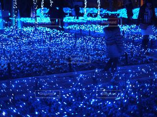 青い道 - No.895218