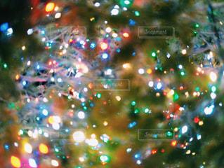 クリスマスツリー - No.895349