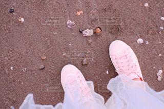 春の海の写真・画像素材[1099255]