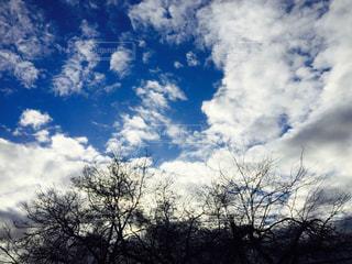 空には雲のグループの写真・画像素材[884839]
