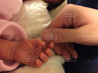 赤ちゃんの手の写真・画像素材[971499]