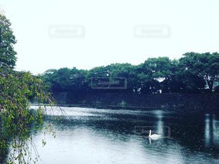 水の体の写真・画像素材[885296]