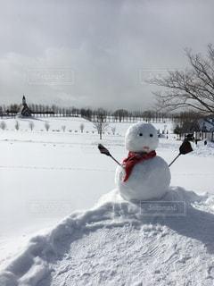 雪だるまワンショットの写真・画像素材[989188]