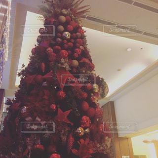 クリスマス ツリーの写真・画像素材[886108]