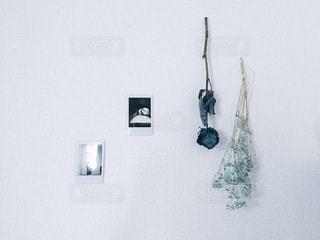 白い壁の部屋の写真・画像素材[886181]
