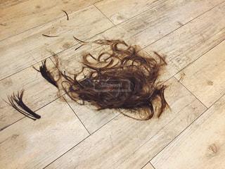 髪の毛の写真・画像素材[971795]