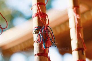結びの糸の写真・画像素材[1016669]