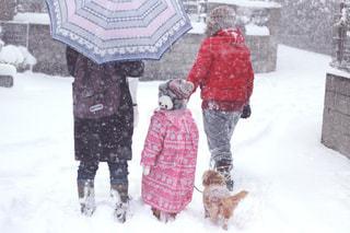 雪の中の家族の写真・画像素材[1016804]