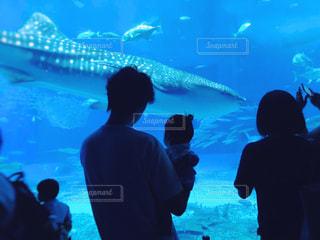 美ら海水族館の写真・画像素材[1535493]