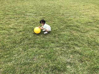 ボールで遊ぶ赤ちゃんの写真・画像素材[1677926]