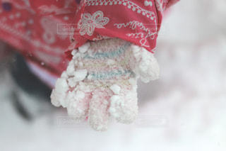 子供の手袋の写真・画像素材[1708522]