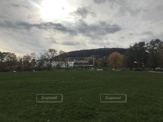緑豊かな緑のフィールドの上に羊立っての群れの写真・画像素材[886683]