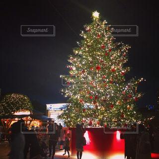 クリスマス ツリーの横に立っている人々 のグループの写真・画像素材[891439]