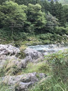 山の中を流れる川の写真・画像素材[889622]