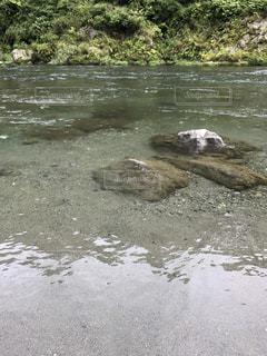 川の静かな水面の写真・画像素材[889624]