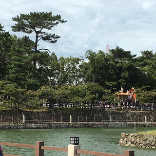 岸和田だんじり祭。岸城神社に向かうだんじりの写真・画像素材[888621]