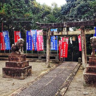神社の鳥居と狛犬の写真・画像素材[903144]